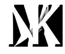 logo9N